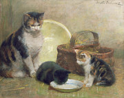 Pussy Cat Posters - Cat and Kittens Poster by Walter Frederick Osborne
