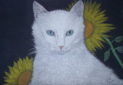Pastel  Drawings Paintings - Cat and Sunflowers by Cybele Chaves