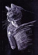 Scratchboard Paintings - Cat at the Window by Roger Parnow