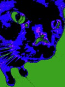 Kittens Digital Art - Cat Cartoon Eyes 9 by Nina Kaye