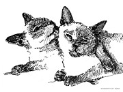 Kittin Framed Prints - Cat-Drawings-Siamese-2 Framed Print by Gordon Punt