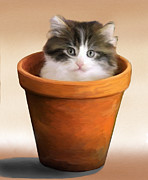 Cats Originals - Cat in a Pot by Snake Jagger