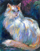 Impasto Drawings Posters - Cat In A Sun Painting  Poster by Svetlana Novikova