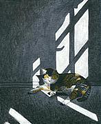 Cat In Empty Room Print by Carol Wilson