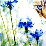 Watercolor Cat Paintings - Cat in the cornflowers by Paul Lovering