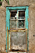 Screen Doors Photo Metal Prints - Cat in the Window Metal Print by David Patterson