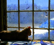Window Panes Posters - Cat in the Window Poster by Randall Weidner