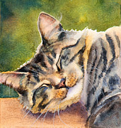 Tabby Art - Cat Nap by Bonnie Rinier