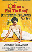 Elizabeth Taylor Prints - Cat on a Hot Tin Roof Print by Nomad Art And  Design
