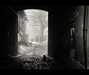 Dark Art - Cat Sitting Near Door by WojtekZet