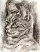 Sepia Drawings Framed Prints - Cat study drawing no three Framed Print by Hiroko Sakai