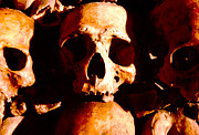 Skull Photos - Catacombs in Paris by Julie VanDore