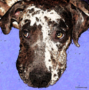 Funny Dog Digital Art Framed Prints - Catahoula Leopard Dog - Soulful Eyes Framed Print by Sharon Cummings
