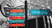 Catalina Prints - Catalina Ave Print by Cheryl Young