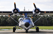 Pby Catalina Posters - Catalina Poster by David Lee Thompson