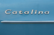 Catalina Prints - Catalina Print by Robert Harmon