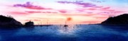 Catalina Prints - Catalina Sunset Print by John YATO