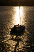 Virgin Gorda Island Art - Catamaran At Sunset by Evelyn Peyton