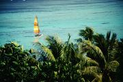 Mast Adventure Prints - Catamaran on Tumon Bay Print by Kyle Rothenborg - Printscapes