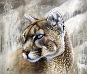 Wolf Portrait Paintings - Catamount by Sandi Baker