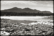 Cataract Lake Black And White Print by Ricky Barnard
