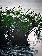 Spider Lily Prints - Catawba Spider Lillies Print by Shirley Braithwaite Hunt