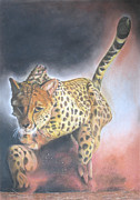 Leopard Running Framed Prints - Catch Me If You Can Framed Print by John Hebb