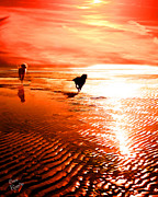 Dogs Digital Art - Catch Me If You Can by Suni Roveto