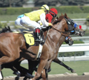 Race Horse Photos - Catching Up by Clarence Alford