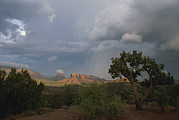 Cathedral Rock Photos - Cathedral Rock In Distance by Todd Gipstein