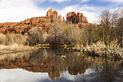 Cathedral Rock Photo Metal Prints - Cathedral Rock Reflections Landscape Metal Print by Darcy Michaelchuk