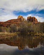 Cathedral Rock Photo Framed Prints - Cathedral Rock Reflections Portrait 2 Framed Print by Darcy Michaelchuk