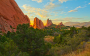 Garden Of The Gods Framed Prints - Cathedral Spires Framed Print by Tim Reaves