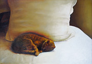 Catnap Print by Cap Pannell