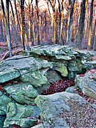 Trout Digital Art - Catoctin Rock by Stephen Younts