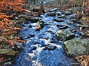 Md Digital Art - Catoctin Stream by Stephen Younts