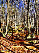 Trout Digital Art - Catoctin Trail by Stephen Younts