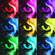 Kitty Digital Art - Cats Eye in Hues by East Coast Barrier Islands Betsy A Cutler