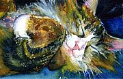 John Benson Paintings - Cats Eyes 14 by John D Benson