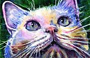 John Benson Paintings - Cats Eyes 2 by John D Benson