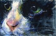 Cats Originals - Cats Eyes 20 by John D Benson
