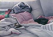 Carol Wilson - Cats Hide In Blankets