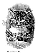 Linocut Prints - Cats Whiskers, Conceptual Artwork Print by Bill Sanderson
