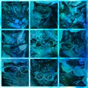 Kitty Digital Art - Cattitudes by Barbara Berney