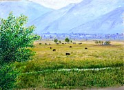 Fields Paintings - Cattle Grazing at Dawn by L Jay Adams