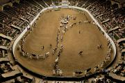 Grandstands Framed Prints - Cattle Show At The Coliseum Framed Print by Joel Sartore