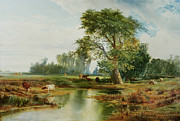Grove Paintings - Cattle Watering by Thomas Moran
