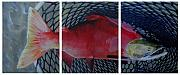 Salmon Paintings - Caught by Karen  Peterson