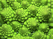 Healthy Eating Art - Cauliflower Fractals by Mark Watson (kalimistuk)