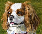 Spaniels Paintings - Cavalier King Charles Spaniel Blenheim on Green by Dottie Dracos